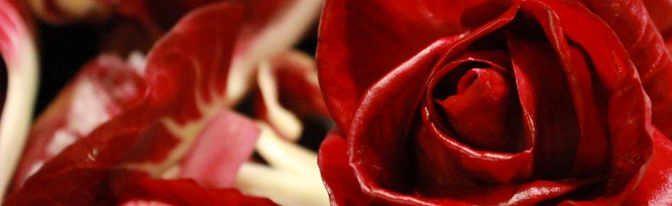 Pranzo con la Rosa di Gorizia al Rosenbar